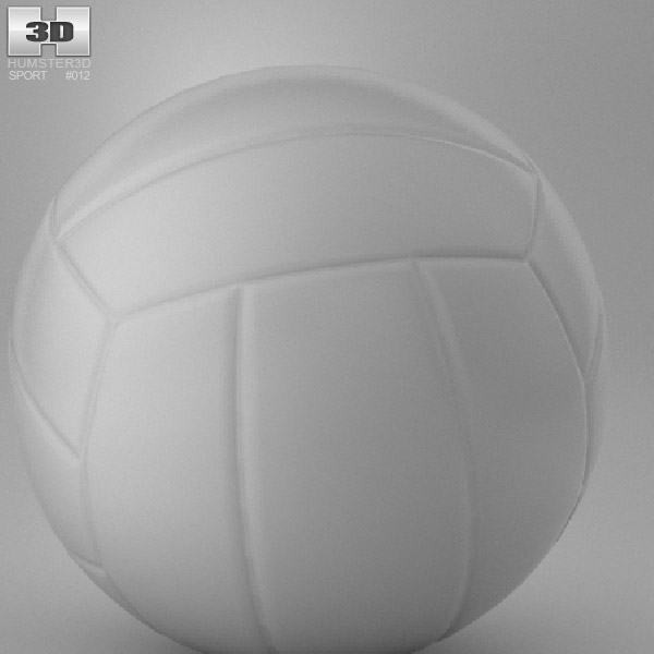 Water Polo Ball 3d model