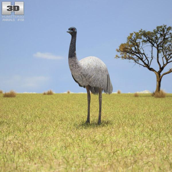 Emu 3d model