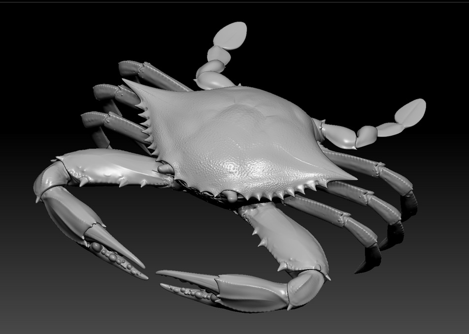 Making of Blue Crab