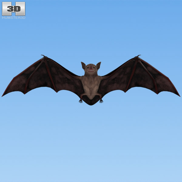 Common Bat 3d model