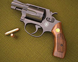 Smith & Wesson Model 36 3D model