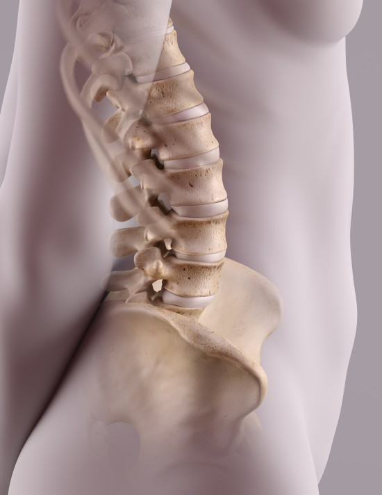 Lumbar spine by James Archer