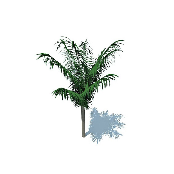 Palm Tree 3D Dwg Free Download ••▷ SFB