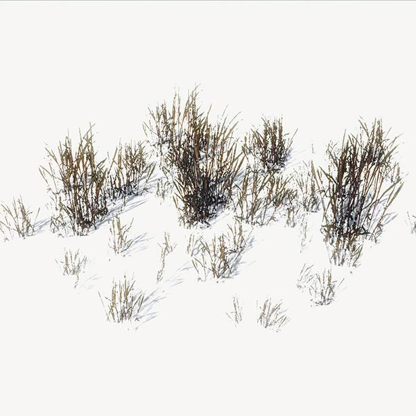Grass Download Free 3d Models