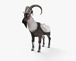 Wild Goat HD 3D model