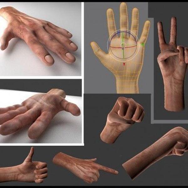 Rigged Hands Download Free 3D models