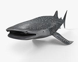Whale Shark HD 3D model