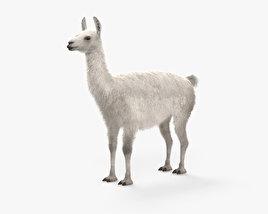 Llama HD 3D model