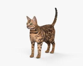 Bengal Cat HD 3D model