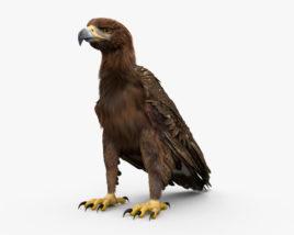 Golden Eagle HD 3D model