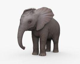 Baby Elephant HD 3D model