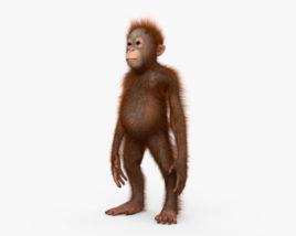Orangutan Baby HD 3D model