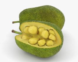 Jackfruit 3D model