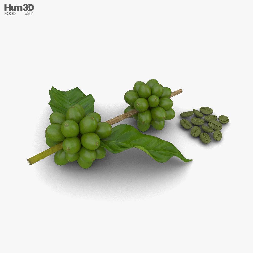 Green Coffee Beans 3d model